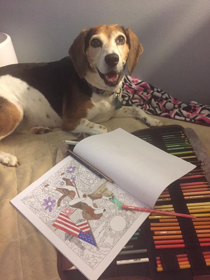 Life Without Beagle