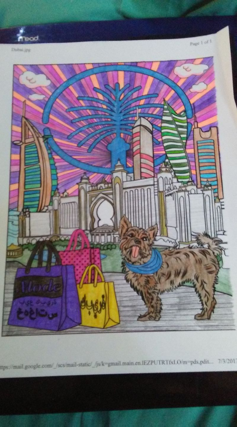 Yorkie Colouring Book