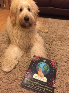 best Goldendoodle book