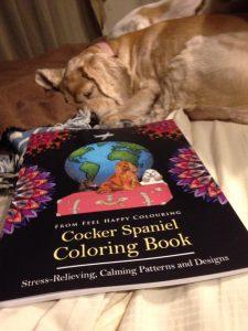 colouring-book-cocker-spaniel